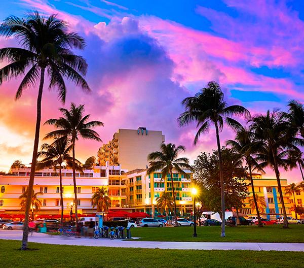 Miami flight charter